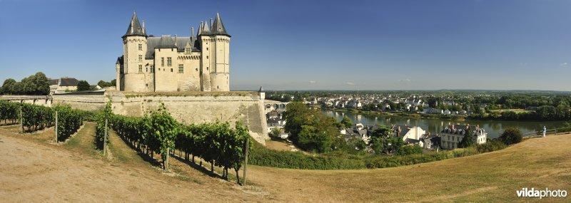 Kasteel en wijngaard van Saumur