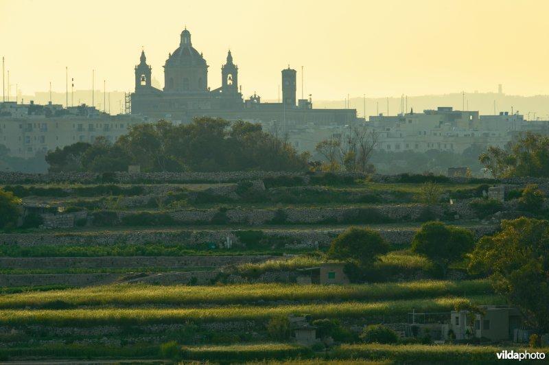 Stad met kathedraal op Malta, in de voorgrond talrijke jachthutten