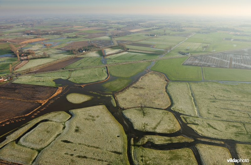 Polders rond Damme